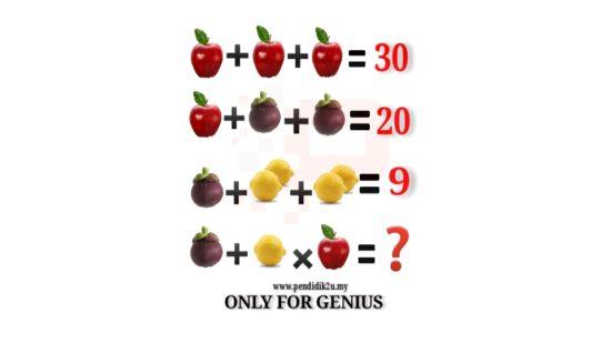 Berapa Jawapan Soalan Matematik Ini
